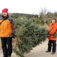 Now that we have entered the Holiday season, many families will be putting up Christmas trees in the next few weeks as part of their traditional celebrations. With a variety […]